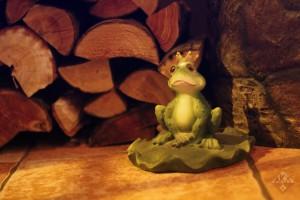 aka-latvian-cuisine-restaurant-riga-frog